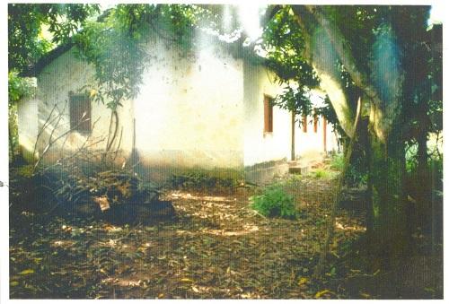 A casa onde nasci, num bairro rural de Cafelândia, estava assim há alguns anos